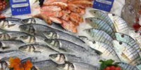 Recettes de poissons cuisiner le poisson e e for Poisson les plus cuisiner