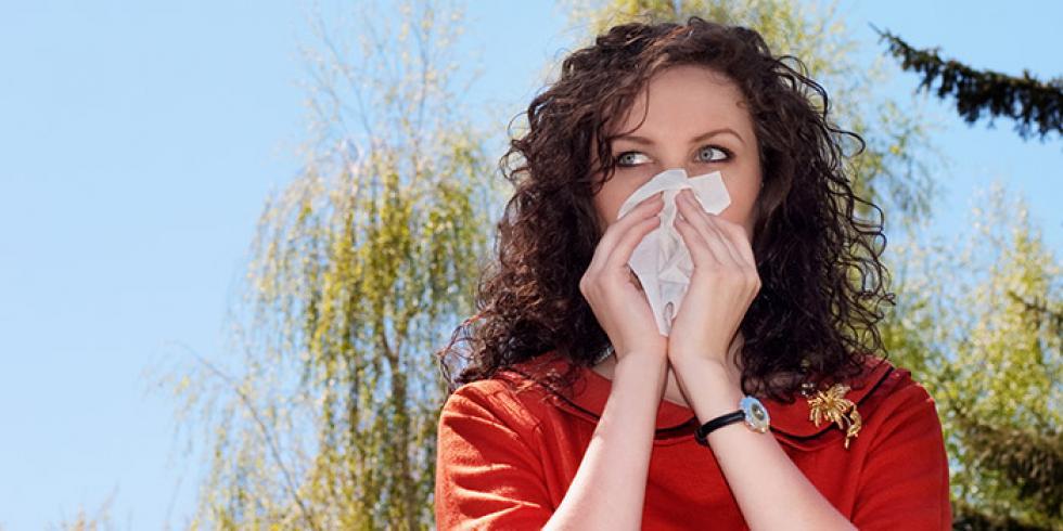 allergie aux pollens et rhinite allergique allergie au bouleau ou au cypr s quels traitements. Black Bedroom Furniture Sets. Home Design Ideas