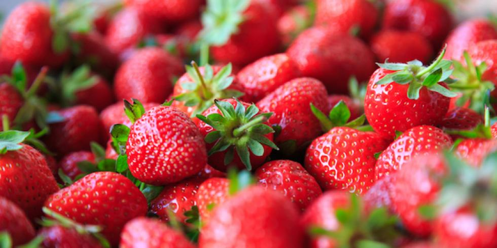Quel beurre choisir pour regime - Quel fraisier choisir ...