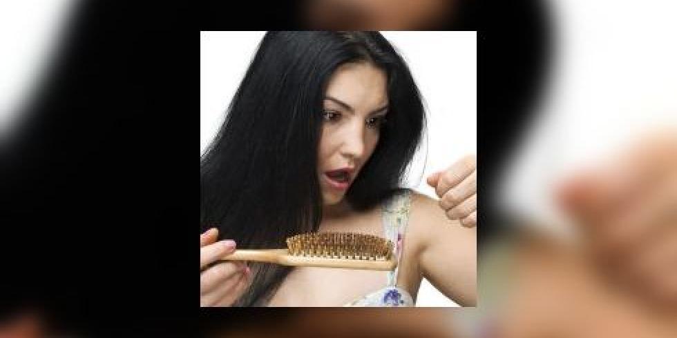 chute de cheveux chez les femmes les femmes perdent leurs cheveux alop cie androg nog n tique. Black Bedroom Furniture Sets. Home Design Ideas