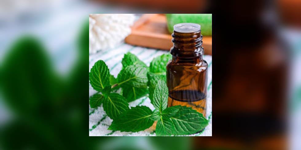 soigner gastro plantes huiles essentielles contre gastro ent rite diarrh e naus es e sante. Black Bedroom Furniture Sets. Home Design Ideas